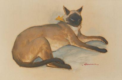 Henri DELUERMOZ (1876-1943)  Chat siamois...