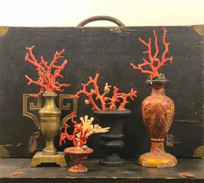 Quatre vases contenant des branches de corail,...