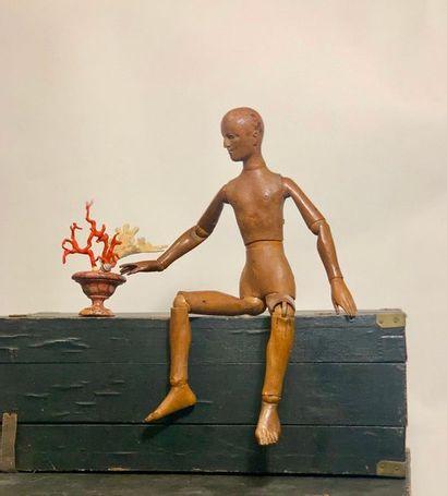 Mannequin en pin, les doigts des mains et des pieds sculptés. Angleterre. XIXème...