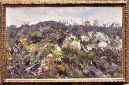 Roger REBOUSSIN (1881-1965) : La Lande. Huile...