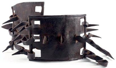 Collier armé pour chiens de berger en fer...
