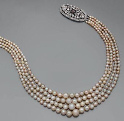 Collier de quatre rangs de 271 perles fines...