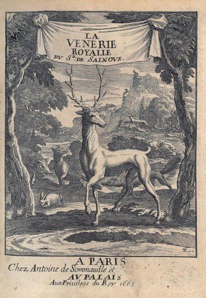 Robert de SALNOVE