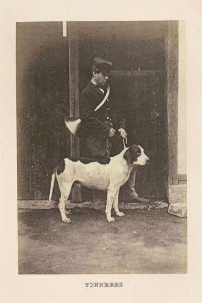CYNOPHILIE. Exposition canine du Bois de...