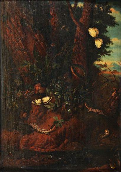 Attribué à Carl Willem de HAMILTON (1668-1754)