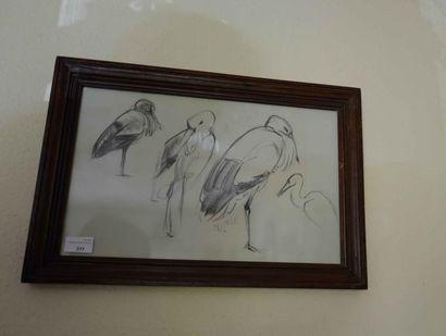 Dessin au crayon : étude de cigognes, signée...