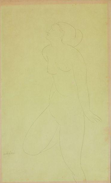 Amedeo MODIGLIANI (1884-1920) : Nu de femme...