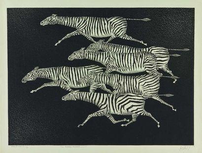 Mario AVATI (1921-2009) : Six zèbres courant,...