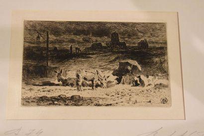 Félix BUHOT (1847-1898) : Les Ânes du Midi,1873....