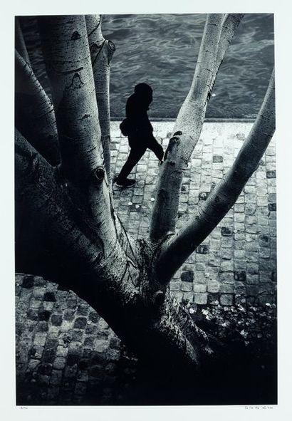 LO KEE (né en 1989)  Entre les arbres  Tirage...