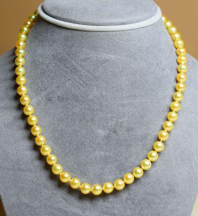 Très rare collier de perles couleur GOLD...