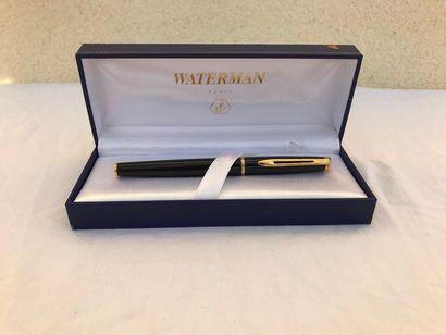 Stylo plume Waterman  Style plume doré et...