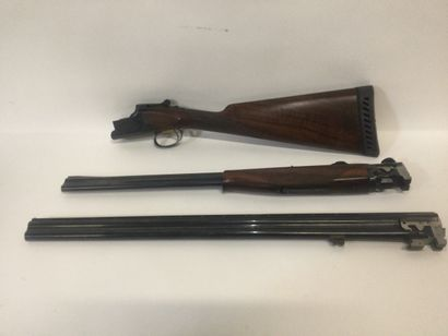 Carabine BROWNING B125 N°224PW01659 2 jeux...