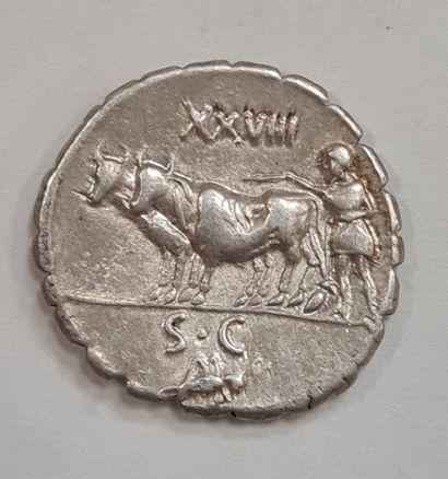REPUBLIQUE ROMAINE - MARIA - Denier serratus argent - A/ Buste de Cérès drapée à...