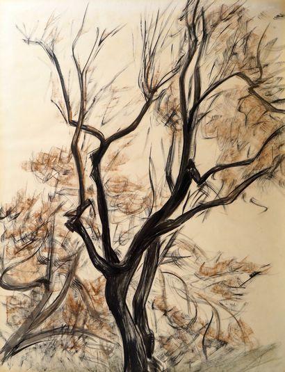 12- Ecole Française  ''L'arbre''  Monogrammé...