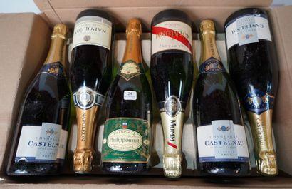 24- 8 bouteilles de Champagne Castelnau et...