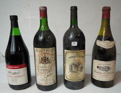 46- 4 Magnums : Cahors, Bordeaux, Lambrousco,...