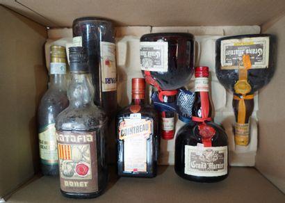 41- 7 bouteilles d'alcool divers : Pineau,...