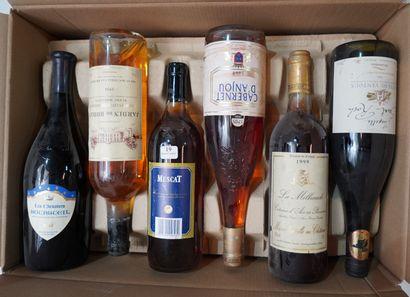 19- 12 bouteilles : Bourgueuil, Crepy, Pecharmant,...