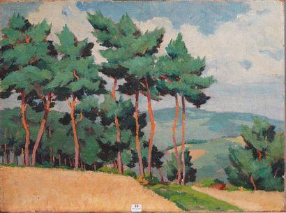 10- Ecole Française XXème siècle ''Les pins''...