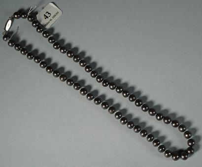 43- Collier ras du cou en perles de Tahiti grises (diamètre 8 mm)  Longueur : 45...