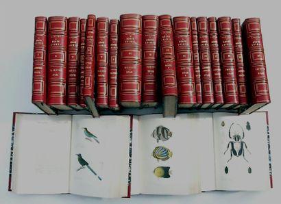 ZLOT 5 volumes en 1/2 reliures : Littré et...