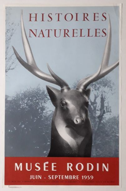 Histoires Naturelles, Musée Rodin, Paris,...