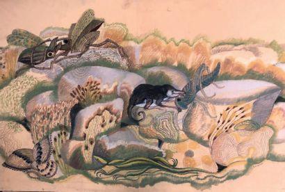 Henri SAMOUILOV (1930-2014) Mulot et insectes Pastel signé en bas à droite 75 x 110...