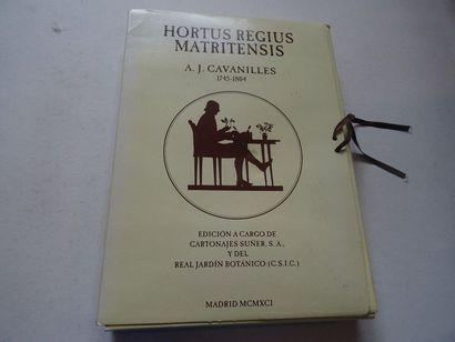 «Hortus Regius Matritensis». Reproduction...