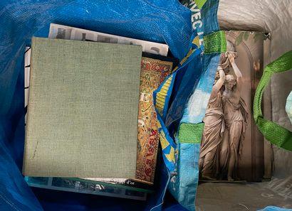 Lots de livres dans deux sac dont arts,...