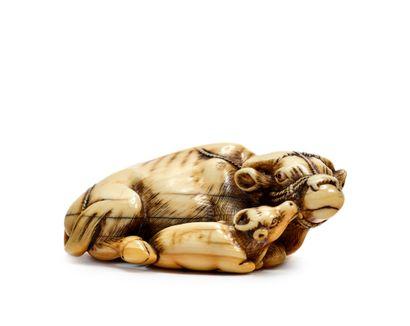 JAPON - Epoque EDO (1603 - 1868) * Netsuke en ivoire, vache couchée, une longe de...
