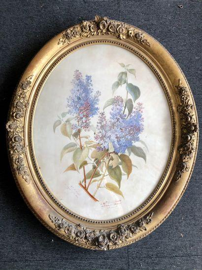 L RAIBEl (actif au XIXeme siècle) Nature morte aux lilas Aquarelle et rehauts de...