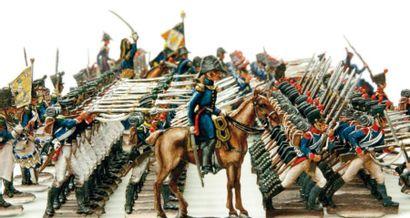 1er Empire. Autriche. Infanterie de ligne...