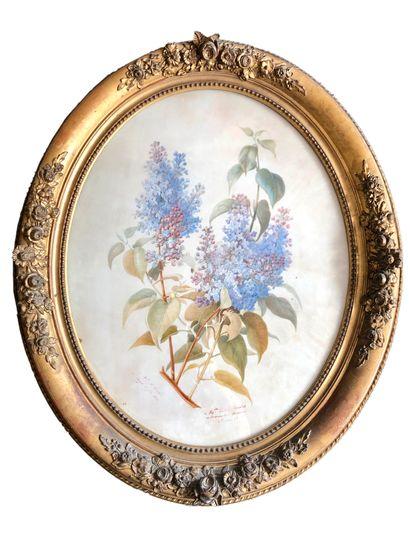 L RAIBEl (actif au XIXeme siècle)  Nature...