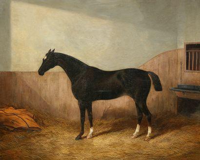 Albert CLARK (Actif vers 1821-1910)  Cheval...