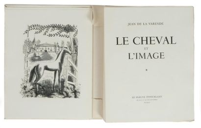 LE CHEVAL ET L'IMAGE: Editions le fleuve...