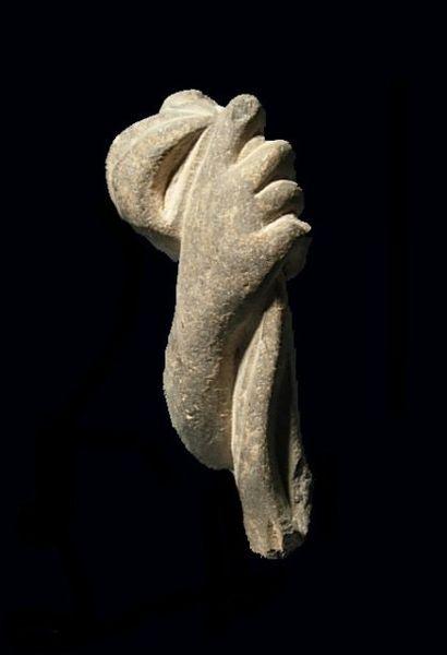 Main de Bouddha, tenant un pli de la robe...
