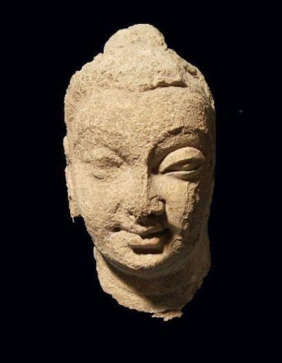 Tête de Bouddha. En stuc. (Corrosion et concrétions...