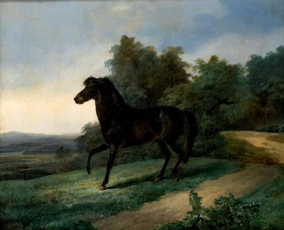 Johann Georg VOLMAR (1770-1831)