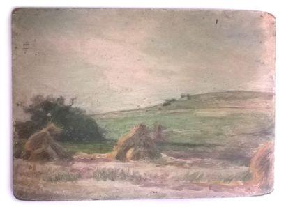 Jules-Cyrille Cavé (1859-c.1940)  12 études...
