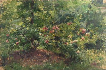 Jules-Cyrille Cavé (1859-c.1940)  10 études de fleurs et de plantes, sous-bois  Huile...