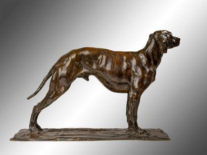 REMBRANDT BUGATTI (1884 1916) Braque debout Épreuve en bronze patiné Signé sur la...
