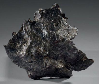 SIKHOTE-ALIN Sidérite (Ogg, IIAB) Météorite...