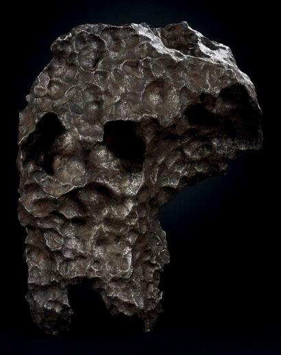 GIBEON Météorite complète avec un relief très prononcé Météorite avec beaucoup de...