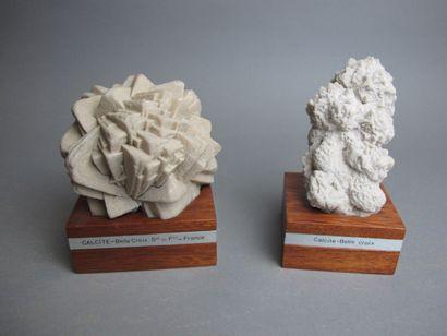 Deux roses de Calcite de Belle Croix (France)...