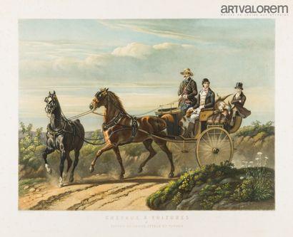 Henri Auguste de MONTPEZAT (1817-1859) gravé...