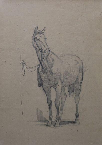 Isidore PILS (1815-1875)  Etude de cheval...