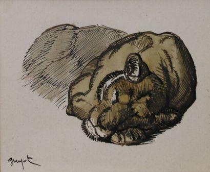 Georges Lucien GUYOT (1885-1973)  Lionne...
