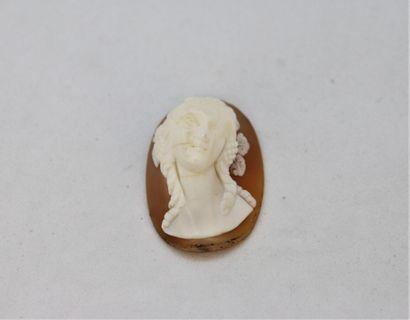 Camée coquille bombée représentant un buste...