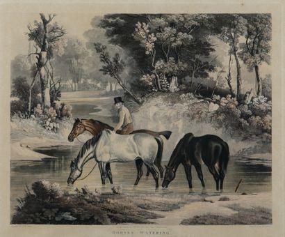 S.TE.JONES gravé par W.F. FELLOWS  Horses...
